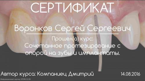 Воронков Сергей Сергеевич